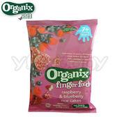 歐佳 Organix 寶寶莓果米餅50g(7個月以上嬰幼兒)
