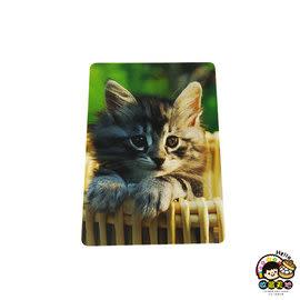 【收藏天地】台灣紀念品*3D拼圖-貓咪∕拼圖 夜光 送禮 文創 風景 觀光 禮品