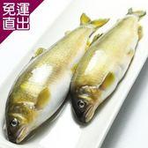 那魯灣 純淨帶卵母香魚 2盒6尾/1公斤/盒【免運直出】