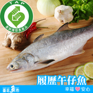 【台北魚市】產銷履歷 午仔魚 300g±10%