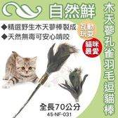 *KING WANG*自然鮮《木天蓼孔雀羽毛逗貓棒》貓咪玩具【45-NF-031】