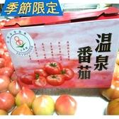 礁溪溫泉蕃茄5斤約15-18粒/盒