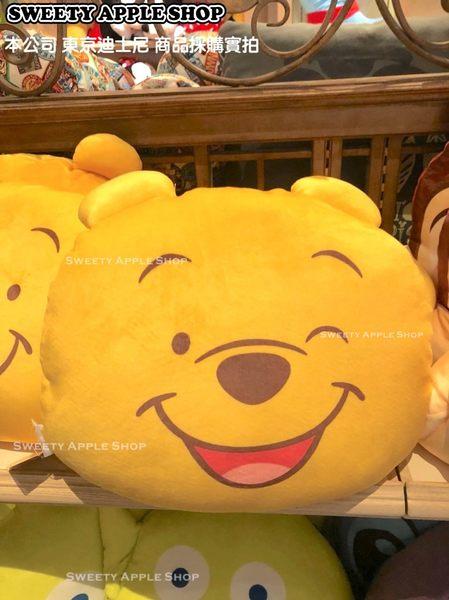 (現貨&樂園實拍圖) 日本 東京迪士尼限定 小熊維尼 2way 表情 雙面玩偶抱枕 40cm