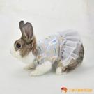 兔兔裙子荷蘭豬兔子衣服茶杯犬吉娃娃小型犬寵物衣【小獅子】