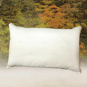 【FITNESS】日本進口纖維 東洋紡抗菌枕(1顆)