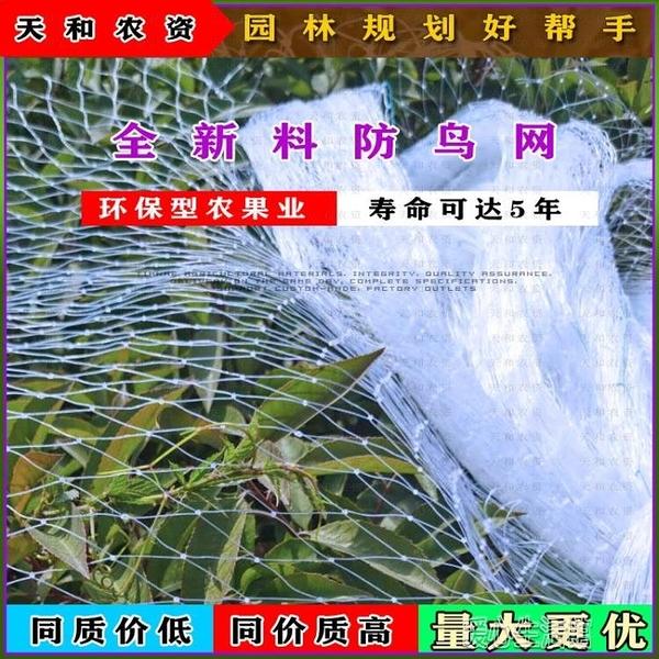 果園防鳥用網尼龍防鳥尼龍線網果樹防鳥用網樹網防鳥網葡萄防鳥網 快速出貨