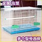 鳥籠鴿子相思鳥籠子鸚鵡籠兔子籠通用鳥籠群...
