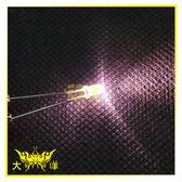 ◤大洋國際電子◢ 3mm透明殼 暖白光 高亮度LED (1000PCS入) 0626-WW LED 二極管