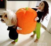 網紅狗狗衣服寵物衣服貓咪衣服搞怪變身搞笑衣服小泰迪比熊秋冬裝 青山市集