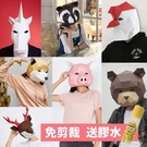 DIY動物頭罩 動物紙模型 (附膠水)/一個入(定500)紙面具 幾何造型 頭套