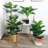 仿真盆栽 仿真北歐植物創意客廳室內花裝飾客廳假綠植盆栽擺件INS網紅盆景 21色