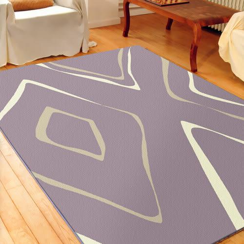 范登伯格 艾斯 簡約風進口地毯-藝術160x230cm