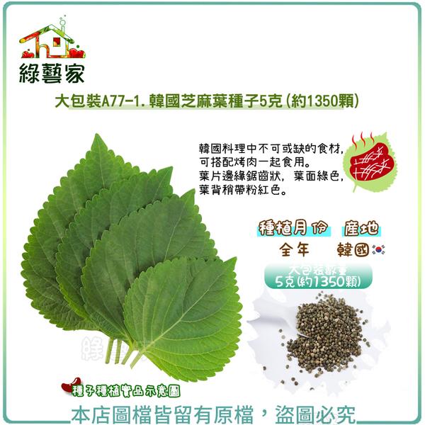 【綠藝家】大包裝A77-1.韓國芝麻葉種子5克(約1350顆)