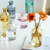 花瓶擺件客廳插花干花北歐玻璃透明桌面裝飾【極簡生活】