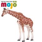 《MOJO FUN動物模型》動物星球頻道...