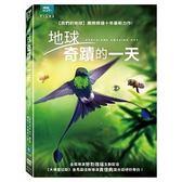 地球 奇蹟的一天 DVD Earth One Amazing Day 免運 (購潮8)