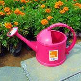 灑水壺家用澆花壺園藝澆水壺