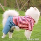 狗狗衣服中大型犬夏裝四腳衣大狗金毛薩摩耶拉布拉多衣服夏季薄款  英賽爾3