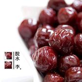 脫水李 220g 酸甘甜 蜜餞 解膩 辦公室零食 蜜餞推薦 台灣蜜餞【甜園】