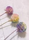 彩色松蟲果 特殊染色,單支價 尺寸約3公分