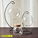 永生花玻璃罩子,LED燈罩吊球微景觀球,...