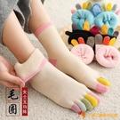 4雙裝 彩色五指襪女毛圈加厚加絨保暖抗凍冬季純棉中高筒【小獅子】