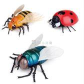 遙控蒼蠅昆蟲動物模型兒童男孩新奇玩具搞怪整蠱禮物模擬瓢蟲   走心小賣場