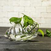 創意海螺形玻璃花瓶透明水培花盆多肉盆綠蘿水養植物家用擺件器皿wy
