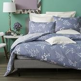 HOLA 蕨藍純棉床包兩用被組 雙人