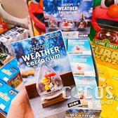 日本 Re-ment 盒玩 SNOOPY 史努比的天氣瓶 瓶中造景 全六款 單盒隨機出貨 COCOS TU003
