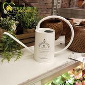 日本品牌NITORI 專櫃 田園風鐵質長嘴花灑園藝澆水壺 灑水壺 卡布奇诺igo