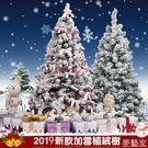 聖誕節噴雪植絨仿真雪松樹1.2米1.5米1.8米3米雪景裝飾品布置套餐 夢藝家
