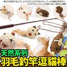 【培菓平價寵物網】DYY》獨創桿身天然系...