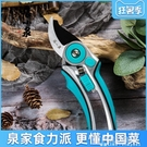整枝剪枝果樹修枝剪刀園藝園林省力修花枝強力家用工具剪子 夏季狂歡