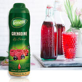 法國Teisseire果露(綜合莓)-生活工場