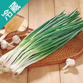 【台灣】宜蘭三星蔥1包(250g±5%/包)【愛買冷藏】