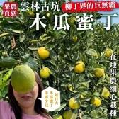 【果農直配-全省免運】木瓜蜜丁(巨無霸柳丁)X5台斤±10%(14-17入)