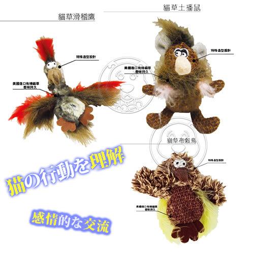 【zoo寵物商城】 R2P貓咪系列》有機貓草玩具-鳥類鼠類造型玩具/個