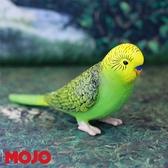 【Mojo Fun 動物星球】鳥類-長尾鸚鵡-綠 387262