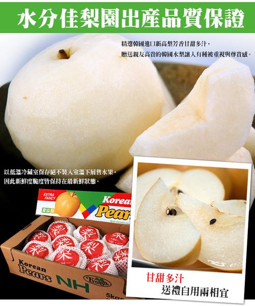 【屏聚美食】韓國新高梨精美禮盒1箱組(5kg/箱/8-10顆)