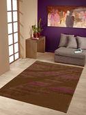 范登伯格卡洛琳~簡單 地毯雲彩120x170cm