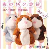 會說話倉鼠錄音老鼠 回聲玩偶哈姆太郎兒童玩具-JoyBaby