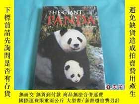 二手書博民逛書店Giant罕見Panda: Discovering China
