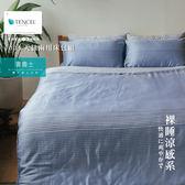 Minis 100%純天絲40支 床包兩用被套四件組 雙人加大 普魯士