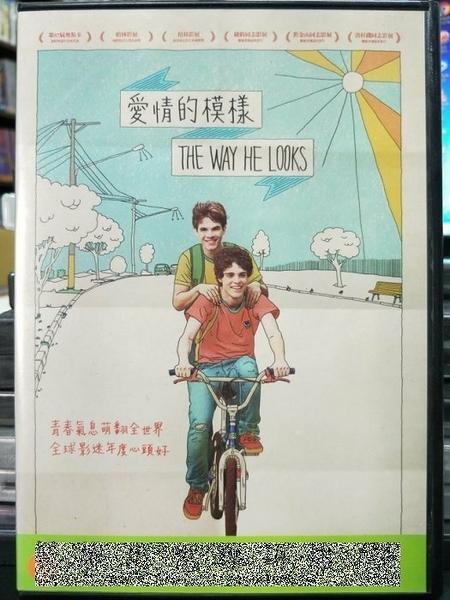 挖寶二手片-P84-010-正版DVD-電影【愛情的模樣/The Way He Looks】-藍色大門巴西版(直購價)