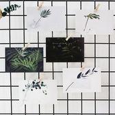 葉葉無聲綠植明信片裝飾卡片INS文藝賀卡