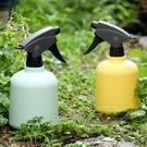 小型園藝澆花噴壺噴霧器陽臺灑水壺室內消毒噴水壺家用澆水噴霧瓶 - 古梵希