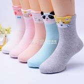 兒童襪子純棉秋冬薄厚款寶寶襪女童襪子男童中筒襪3-5-7-9中大童 滿天星