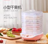 乾果機家用食品烘乾機水果蔬菜寵物肉類食物脫水風乾機小型WL2580【俏美人大尺碼】220v