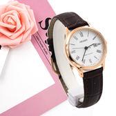 ORIENT 東方錶 FSZ3N006W  女錶 手錶 玫瑰金/28mm